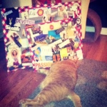 Mal crashed in front of my two new vision boards. :)