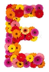 Letter E - flower alphabet isolated on white